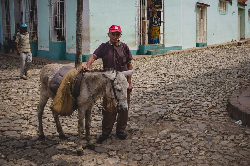 A man and his donkey