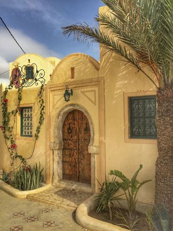 Houses in Tunisia Porte Doors باب أبواب معمار Islamic Islamic Architecture Arabic Style Arabic Arabic Architecture جربة  تونس Tunisie Tunisia Djerbahood Djerba  Architecture Built Structure Building Exterior Entrance Door Arch Plant Sky No People Growth Outdoors Day Palm Tree