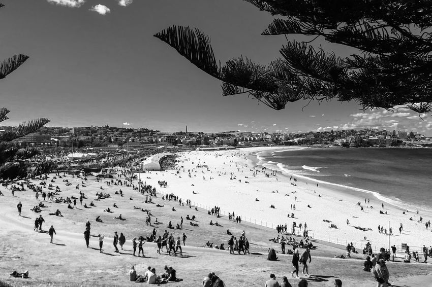 City2Surf day at Bondi Black And White Monochrome Light And Shadow Crowd Large Group Of People Group Of People Water Beach Real People Land Leisure Activity Sea Sky Nature Lifestyles Tree Day Outdoors