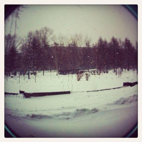 Снежок валит ?