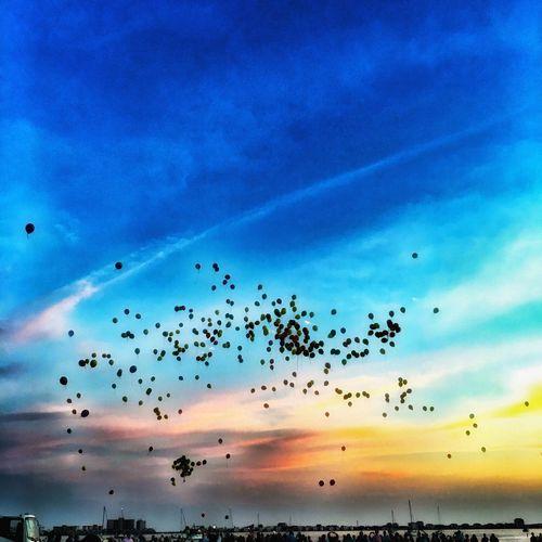 Cloudscape NEM Submissions NEM Clouds Dramatic Sky NEM Mood Apps Balloons Celebration
