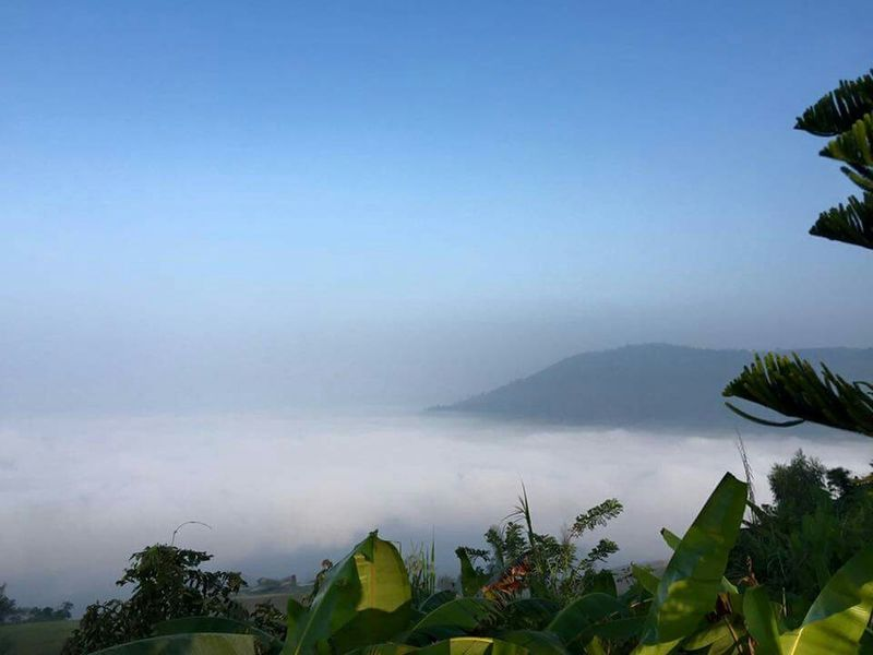 Sea Of Mist Hello World Natural Beauty Nature_perfection Nature Photography Thailand_allshots
