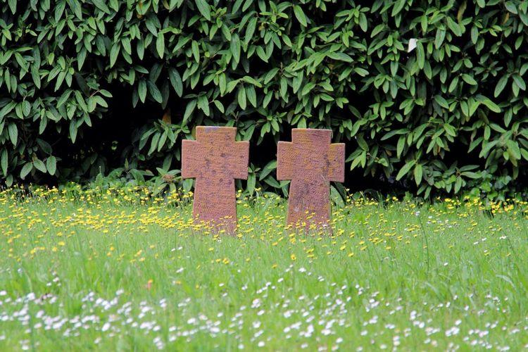 Landau In Der Pfalz Graveyard Graveyardphotography Friedhof Friedhof Der Namenlosen Worldwar2 Cemetry Kreuz  Cross Greenfield