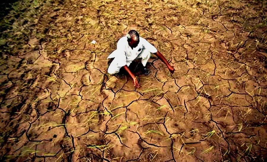 Indianfarmer Struggle One Person One Man Only Real People Full Length Outdoors Men Only Men Nature Adults Only Day People Adult India Working Hard Innocent Face