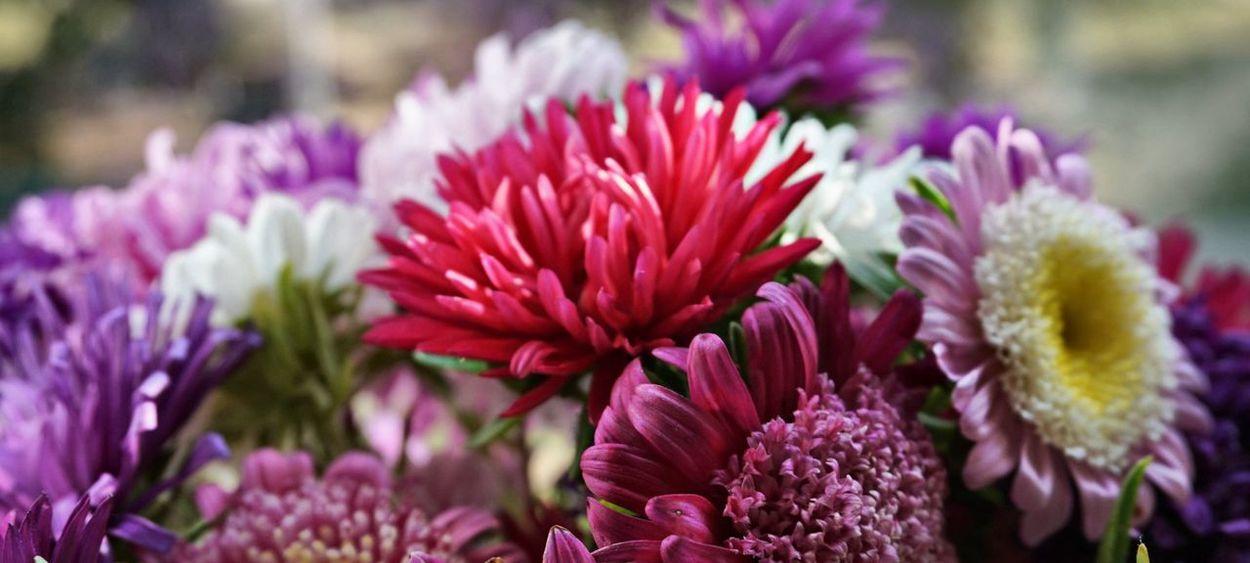 опять цветочки :)) Again Flowers 💐 From Russia With Love My Secret Garden Nice Day September Сентябрь астры Good Times Autumn Flowerporn