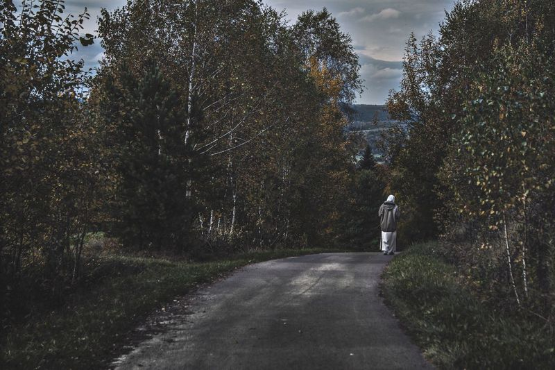 Rear view of person walking on road amidst trees