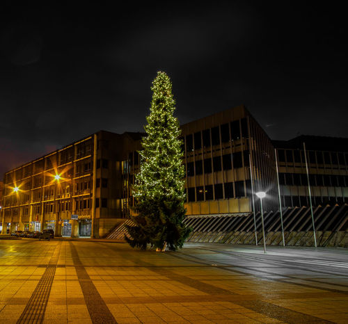 Bielefeld Christmas Merry Christmas! Night Lights Winter Xmas Xmas Decorations Xmas Tree Architecture Building Exterior Built Structure Chrismas Lights Chrismas Time Christmas Tree City Germany Illuminated Nature Night No People Outdoors Sky Street Streetphotography Tree