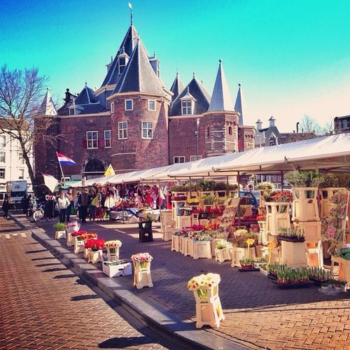 Flowers on #nieuwmarkt In #amsterdam ????☀#alan_in_amsterdam #bloemenmarkt #dotz #flowers #flowermarket #holland #gf_daily #gang_family #gramoftheday #igers #ic_cities #igholland #igersholland #insta_holland #iaminamsterdam #mokummagazine #o2trains #tulip Gramsterdam Iaminamsterdam Flowers Mokummagazine Amsterdam Alan_in_amsterdam Holland Insta_holland Tulip Igholland Gang_family Bloemenmarkt Gf_daily Nieuwmarkt Igers Flowermarket Igersholland Dotz Ic_cities Gramoftheday O2trains Worldwidephotowalk