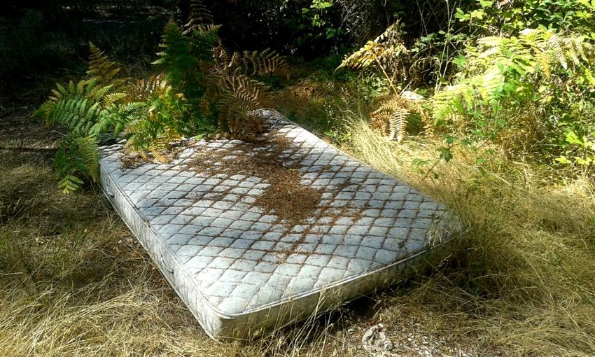 Taking Photos Light And Shadow Abandoned Abandoned Mattress Walking Around OpenEdit Eye Em Abandoned Discarded Urban Decay Beauty Of Decay