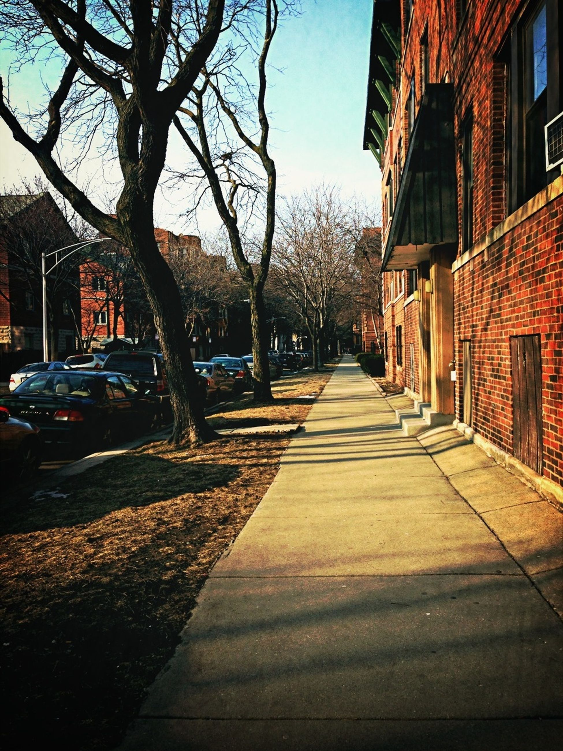 building exterior, architecture, built structure, the way forward, diminishing perspective, street, city, vanishing point, tree, residential structure, residential building, cobblestone, narrow, house, building, sunlight, walkway, alley, footpath, empty