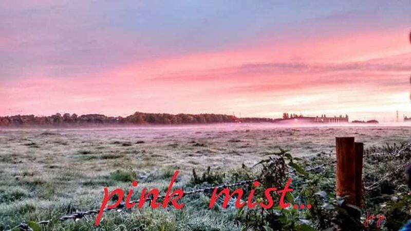 Misty Morning Misty Misty Sunrise