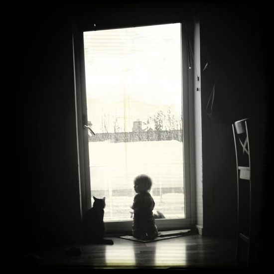 Gizmo the cat and daughter taking a peek of the outside world... Hanging Out Enjoying Life Taking Photos