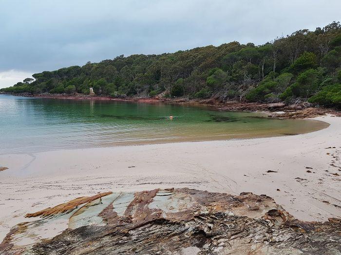 Ben Boyd National Park Beach National Park Ben Boyd Nsw Sapphire Coast New South Wales  Bittangabee Bay Bay Australia Red Rocks  Coastline Coast Sunrise Beach Sand Landscape Sea Outdoors Vacations No People