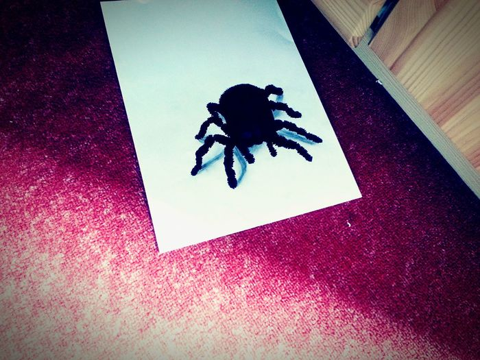 Spider My Painting Justforfun♡