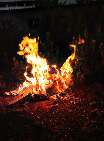 Look fire is duck