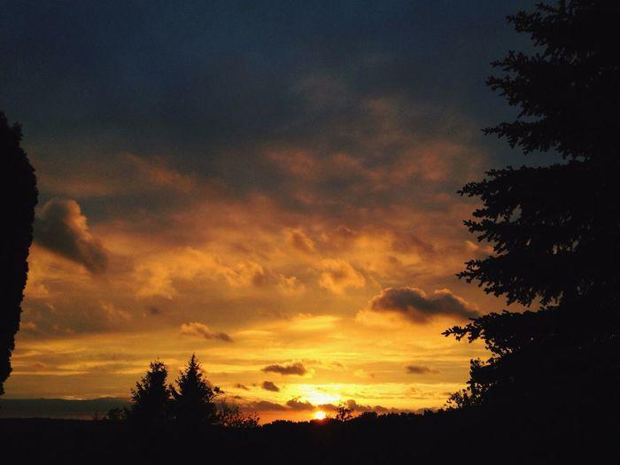 One of the seldom sunsets Gold Sky Sunset Sky Sun Evening