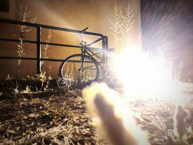 On Your Bike Strong light and shining wheels. Having Fun Bike Ride Old Bike