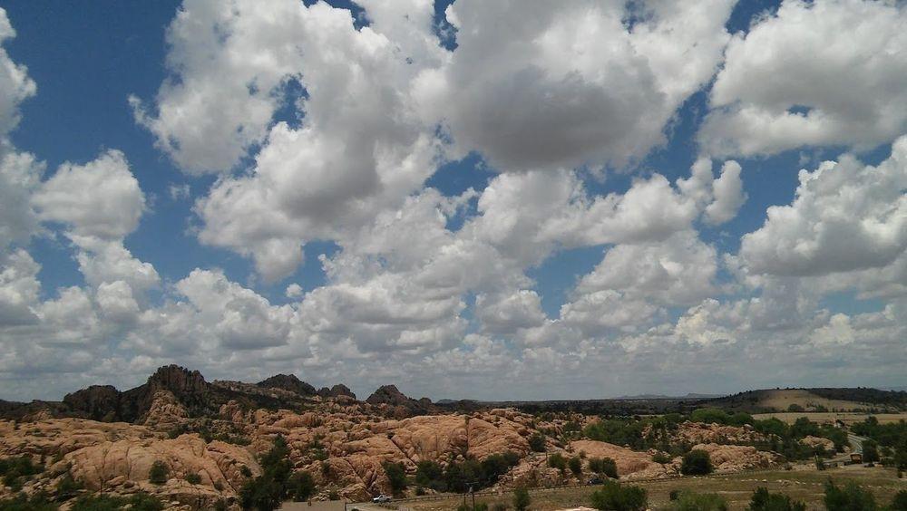 Cloud - Sky Tree Beauty In Nature Day Sky Prescott, AZ