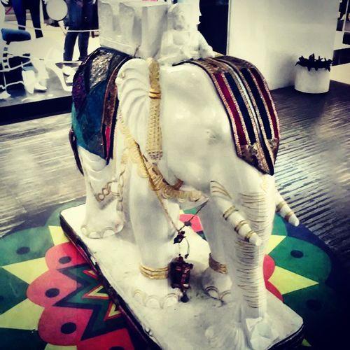 ArtWork Elephant Awesome Mall marble