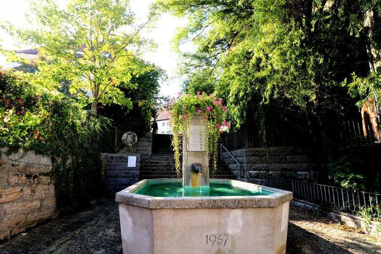 Dorfbrunnen Tree Water Spraying Drinking Fountain Pixelated Fountain Architecture Sky