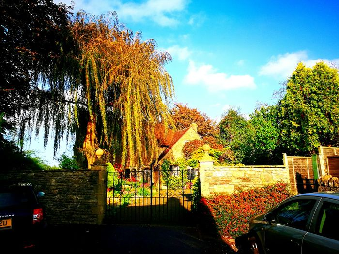 Sky Cloud - Sky Tree Day Outdoors No People Nature Georgian Building High Cotswold Wall With Coping High Cotswold Wall High Stone Wall High Wall Weeping Willow Tree Posh House Cotswold Wall Cotswold Stone Cotswolds Large Metal Gates Ostentatious Gates Tall Trees