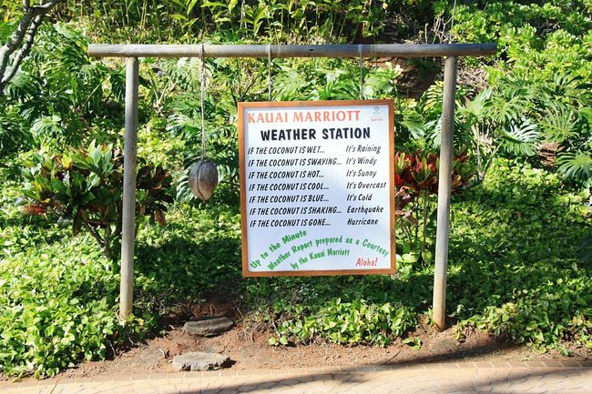 Where i want to spend winter! Kauai Kauai Hawaii Kauai Hawaiian Life Weather Weather Forecast Meteorology Meteorological Station