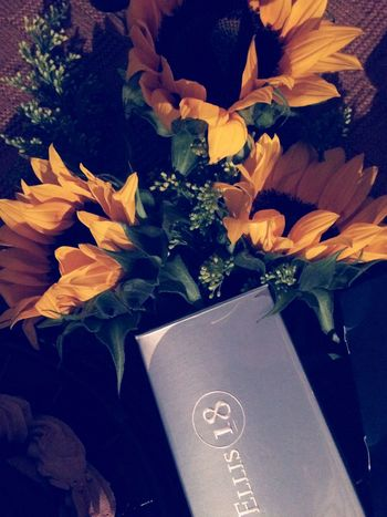 Girasoles Bouquet Beauty In Nature Day Plant Freshness Flower Perry Ellis