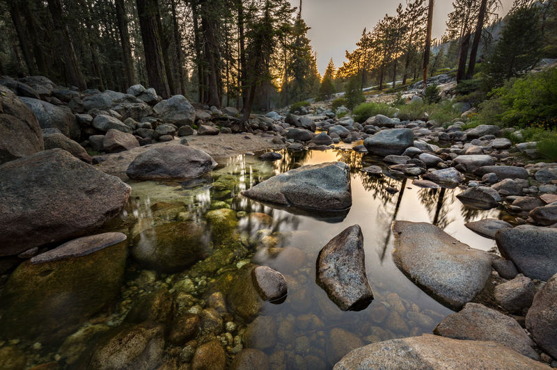 Illuminated in exquisite orange | After setting up a camp and having an early supper, I took a short hike up Tokopah Trail, which was located right by Lodgepole Campground where we were spending the next two nights. Along this moderately inclining trail, the lovely Marble Fork Kaweah River accompanied me. Definitely the water was a bit low as we were already far into mid-August by then. I didn't hike too far into the woods as it was getting dark. The sunset was gorgeous and the glow illuminated every surface on which it touched in the exquisite orange. The word enchanted came to mind. Sequoia National Park, CA Beauty In Nature EyeEm EyeEm Nature Lover Forest Landscape Photography Lodgepole Campground Long Exposure Marble Fork Kaweah River Nature Nature Lover Orange Glow Outdoors Reflection Rocks Sequoia National Park Sunset Sunset Glow Sunset Sky Tokopah Trail Tranquil Scene Tranquility Tree Water Wilderness Woods