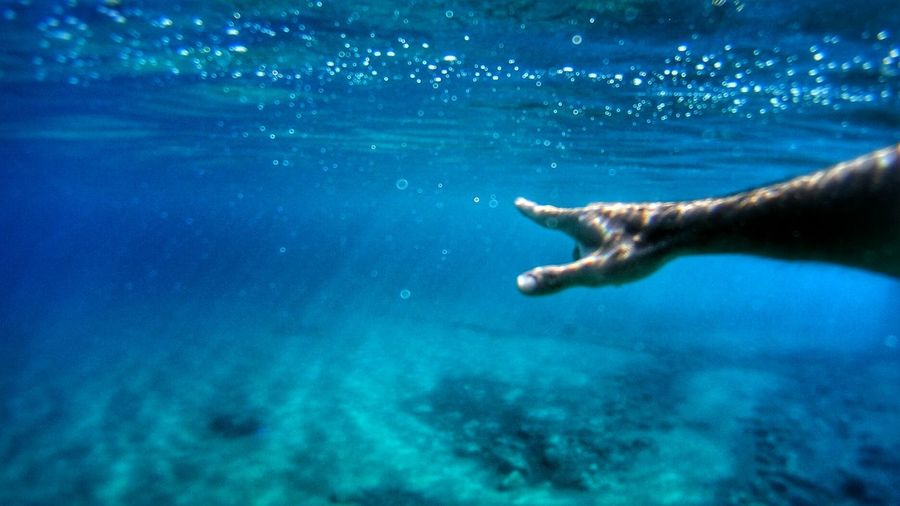 Cropped Image Of Person Swimming Underwater