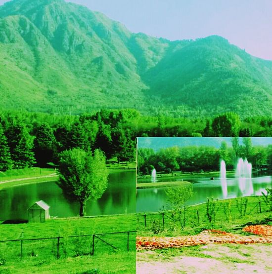 Check This Out Lush Green Mountains Calm Water Enjoying Life Tulip Festival Taking Photos Paradise On Earth Feeling At Home