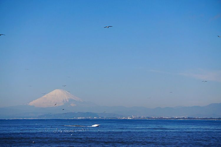 Scenic View Of Lake Kawaguchi And Mount Fuji During Winter
