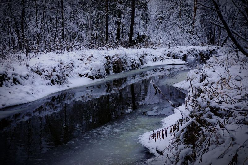 Snow Winter Nature Cold Temperature Beauty In Nature No People Day Ural Russia Snow Beauty In Nature
