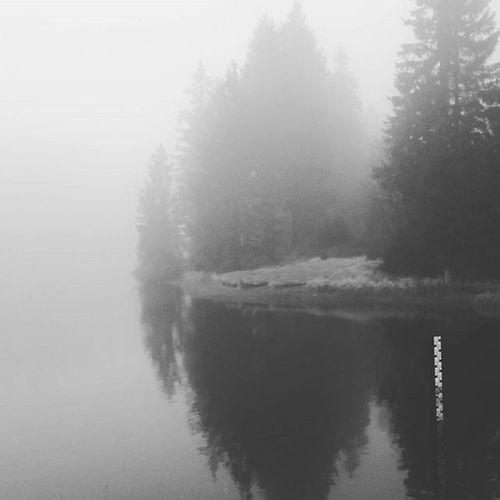 Nebel des