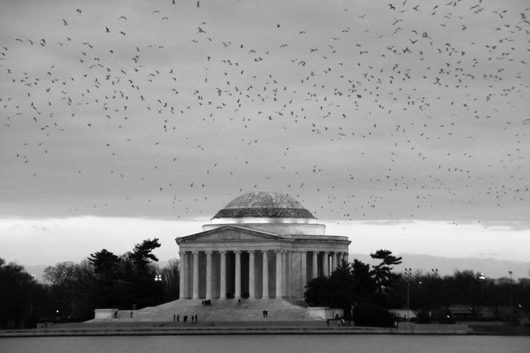 #blackandwhite #monochrome #monuments #thomasjefferson #tidalbasin #WashingtonDC