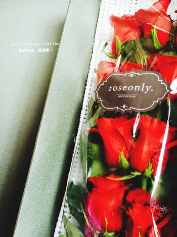 rose only。