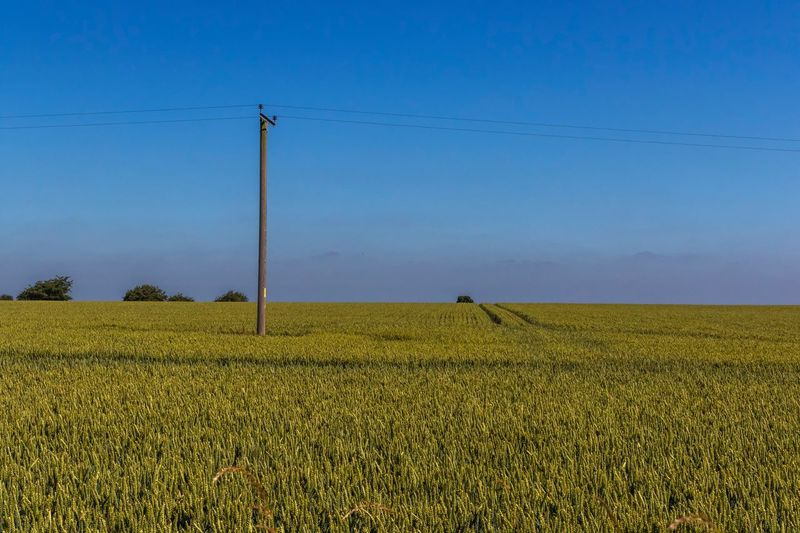 Ridgeway landscape Uk The Ridgeway National Trail Walking Rambling Sky Field Landscape Land Agriculture Growth Electricity  Rural Scene Technology Plant Nature Crop  Tranquility Electricity Pylon Cable Connection Environment Blue Farm Beauty In Nature