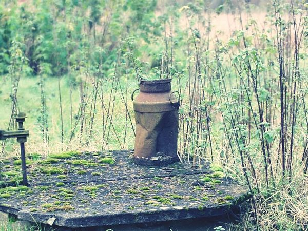 Vintage Milk Can Nature Old Farm
