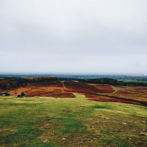 🌓☔🍂🍁 Leicester Traveligram Igtravel Ignature Division Halfandhalf Horizon Myleicester Roads Overcast Travel Vscofolk A6 Exploretocreate Neverstopexploring  Rock British Fitandmovetobritain