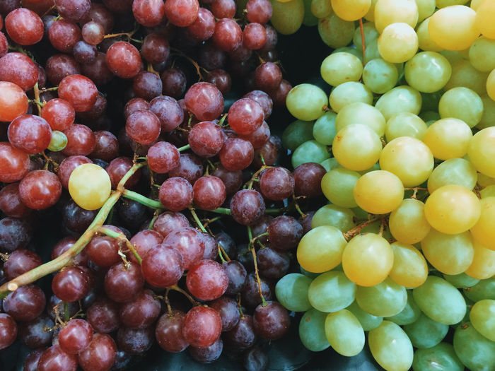Grapes Red Green Odd One Out Fruit Market Food