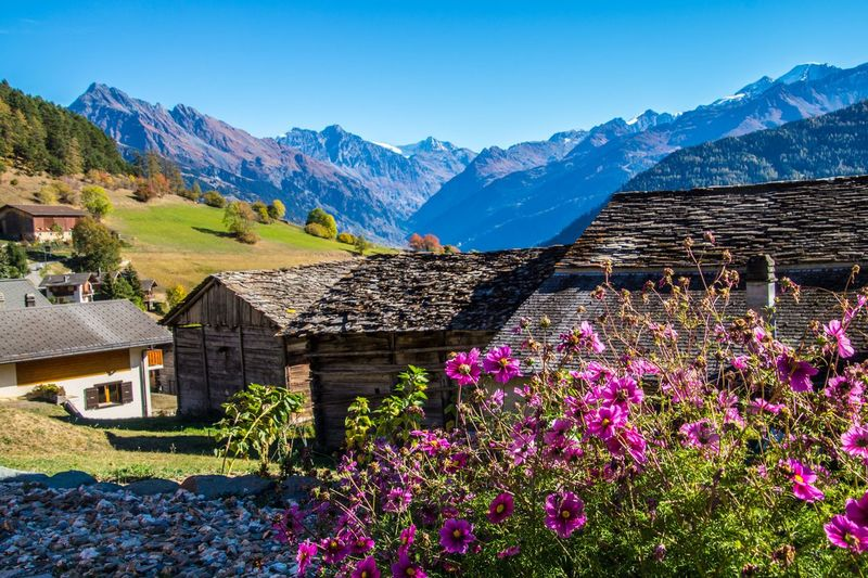 levron,valais,swiss Mountain Architecture Building Exterior Beauty In Nature Building House Built Structure Mountain Range Flowering Plant Plant Flower Sky Nature Scenics - Nature No People Landscape Day Residential District Tranquil Scene Blue Outdoors Snowcapped Mountain