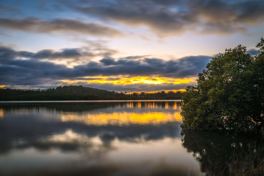 Sunrise reflection in country river with cloudy sky Rising Reflection Orange Australian Australia Nature Landscape Sunrise Water River Karuah Sky Reflection Sunset Water Cloud - Sky Nature Scenics Beauty In Nature Tree Tranquility Tranquil Scene Lake No People Outdoors Day