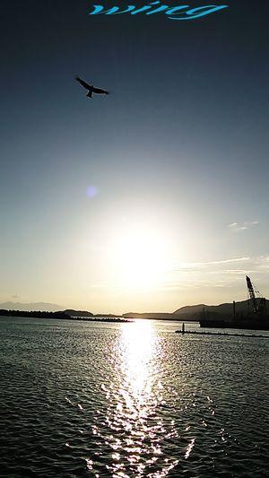 何時もの海~(^o^)v Miyazaki Kushima Fresh Air 夕凪 Yuka  Relaxing Sunset Healing Enjoying Life Pray For Kyushu Happy Kirakira