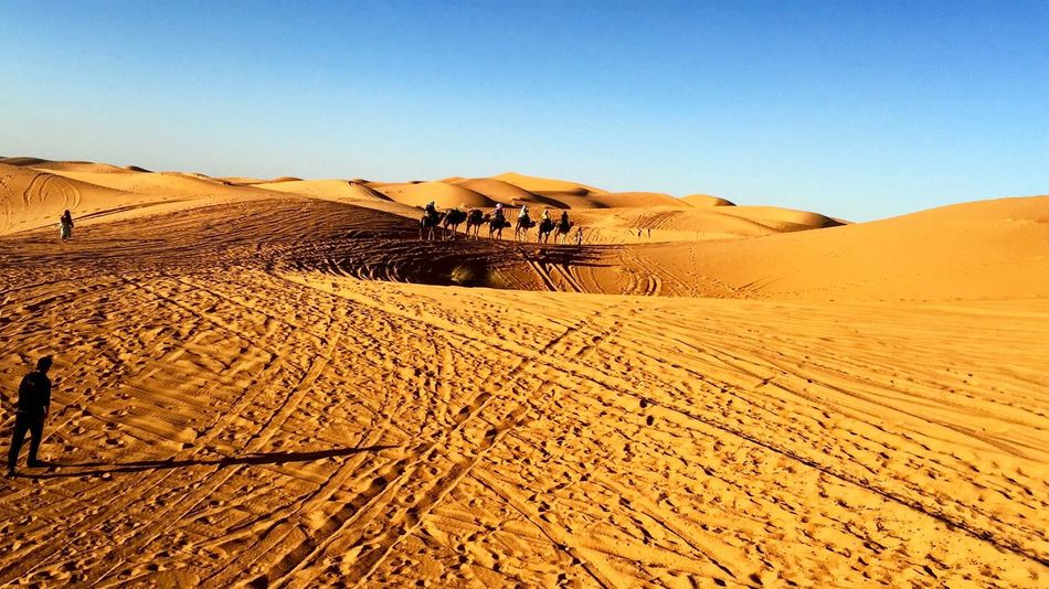 Sahara Sand Dune Desert Landscape Sand Arid Climate Remote Clear Sky Tranquil Scene Tranquility Exploration FootPrint Sunlight Atmospheric Solitude Blue Nature Extreme Terrain Physical Geography Scenics Dessert Morocco Sahara Trip Nature