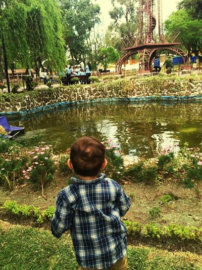 Real People One Person Tree Leisure Activity Outdoors Lifestyles Nature Childhood Day Park Water
