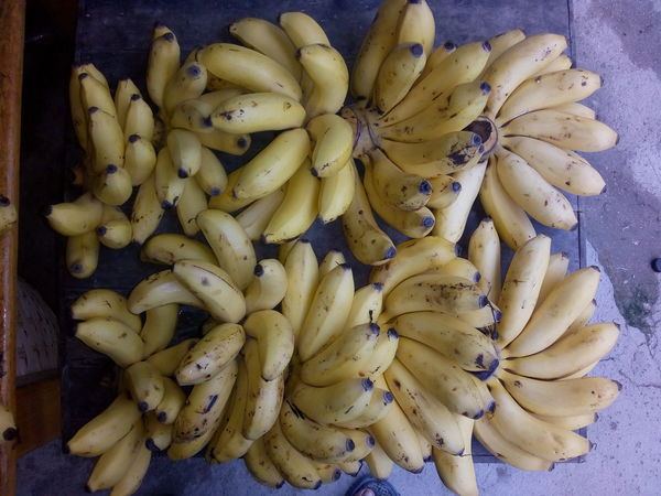 These Bananas Looks so Delicious Bananas Banana Fruit Photography Delicious Close-up