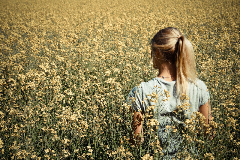 Rear view of woman standing amidst flowering field