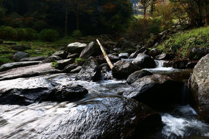 Waterfall River Water Rock 白糸の滝