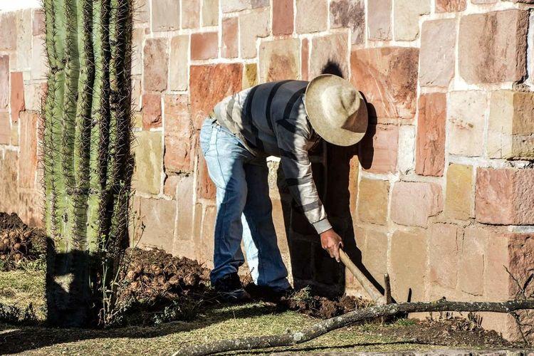 View Of Man Gardening