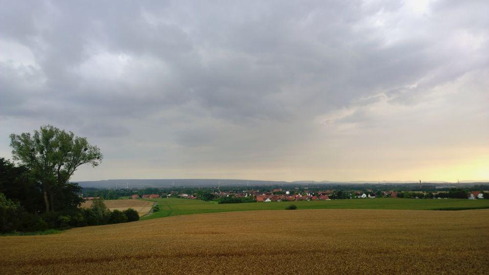 Landscape Schaumburg