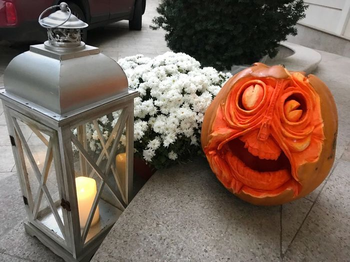 Scary pumpkin face Flower Candle Petal Indoors  Nature Lantern High Angle View Vase Table Flower Head No People Bouquet Beauty In Nature Freshness Close-up Day Pumpkin Halloween Decoration Elehant Design Holiday Face Scary Outdoor